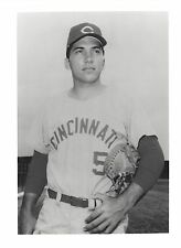 JOHNNY BENCH 8X10 PHOTO CINCINNATI REDS BASEBALL MLB PICTURE