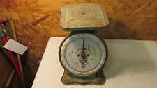 Antique Pelouze Kitchen Utility Scale