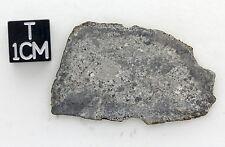 Eucrite, tranche complète de 3,68 g avec croûte de fusion, certifiée analyse XRF