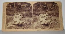 1899 STEREOVIEW - BEHIND THE FILIPINO TRENCHES - BATTLE OF MALABON P.I.