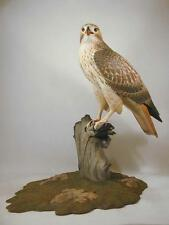 Life Size Red-tailed Hawk Original Wood Carving