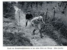 1915 da parte di un ostacolo filo spinato in prima linea sul ISONZO * ww1