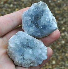 1 x Small Celestite (Celestine) Crystal Cluster. Ref:(G.CLS) crystals minerals