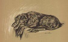 Scottish Deerhound - Lucy Dawson Dog Print - MATTED