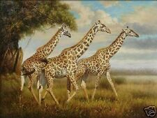 "Art Repro oil painting:""Giraffe In canvas"" 24x36 Inch"