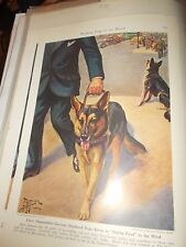 E Miner German Shepherd Service Dog bookplate 1941 National Geographic Mag