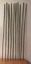 10 River Canes--Walking sticks--Arts & Crafts
