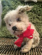 Steiff Molly - Rare 1920's Antique Old Mohair Dog - original + BUTTON Teddy Bear