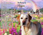 Yellow Lab Memorial Picture-Rainbow Bridge Poem Personalized w/Dog's Name-Pet