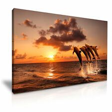 Beautiful Sunset Dolphin Jumping Canvas Wall Art Picture Print A1 Size 76x50cm