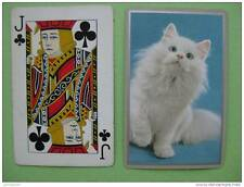 carte à jouer ancienne de collection (USA) : chat
