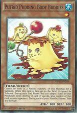 YU-GI-OH CARD: PUTRID PUDDING BODY BUDDIES - MP16-EN019 - 1st EDITION