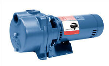 GT20 - Goulds Pumps IRRI-GATOR Self Priming Pump