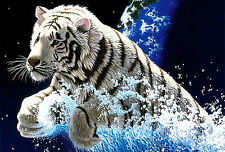 Framed Print - White Bengal Tiger out the Water (Picture Poster Animal Cat Art)
