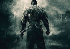 POSTER A4 PLASTIFIE-LAMINATED(1 FREE/1 GRATUIT)*JEUX VIDEO DARK/DEMON'S SOULS.