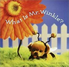 What Is Mr. Winkle? (Step Back in Time with Mr. Winkle), Lara Jo Regan, Good Boo