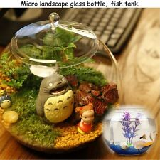 Glass Terrarium Micro Landscape Container Bell Jars Fish Tank W/ Cover (Large)