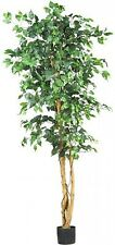 Nearly Natural 5209 Ficus Silk Tree, 6Feet, Green, New, Free Shipping