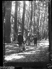 Portrait enfants & chien chasse fusil bois ancien négatif photo verre 6,5 x 9 cm