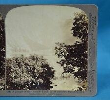 German Stereoview Glimpse Of Obersee Bavarian Alps Germany Underwood