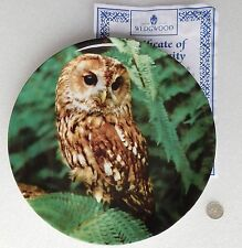 Tawny Owl picture plate Wedgwood bone china Night Caller Michael Leach bird