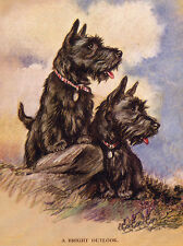 SCOTTISH TERRIER CHARMING SCOTTIE DOG GREETINGS NOTE CARD TWO CUTE DOGS