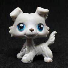 Littlest Pet Shop #363 LPS Grey Collie Dog Puppy Blue Eyes / Chien Colley,