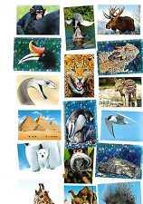 Unsere Erde Rewe Deine Abenteuer Weltreise, 20 Tierbilder zum aussuchen.