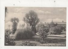 Hospital Grounds Timaru Vintage Postcard New Zealand 595a