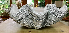 Giant Clam Shell Handmade Finished Sculpture Ornament Pearl Home Decor Gift XMAS