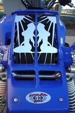 STAINLESS STEEL YAMAHA BANSHEE SUNBURST LADY GRILL MIRRORED FINISH