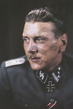 aviation art luftwaffe pilot photo colour Otto Skorzeny Gran Sasso Storch