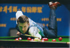 Mark SELBY SIGNED 12x8 Photo Autograph COA AFTAL UK Snooker Champion GENUINE