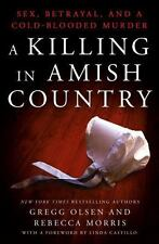 A Killing in Amish Country: Sex, Betrayal, and a Cold-blooded Murder  (ExLib)