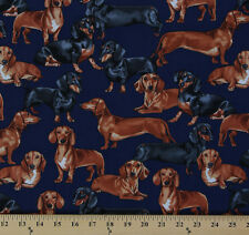 Dachshunds Dogs Puppies Puppy Toss Animal Navy Cotton Fabric Print D779.43
