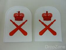 NEW Pair of Royal Marines PT Trainer 1st Class Badges / Patches