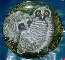Wedgwood Collectors Plate LONG EARED OWL CHICKS - THE BABY OWLS