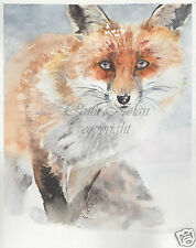FOX mounted painting watercolour print R NOLAN