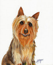 NEW Original Oil Art AUSTRALIAN SILKY TERRIER Portrait Painting DOG PUPPY Signed