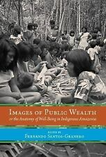 Images of Public Wealth or the Anatomy of Well-Being in Indigenous Amazonia...