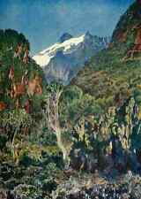A4 photo johnston Sir Harry 1902 kiyanja pic de Ruwenzori imprimé Poster
