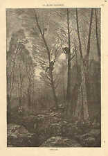 Rabbit Hunting, Tree Stand, Lookout Perch, Vintage 1872 French Antique Art Print