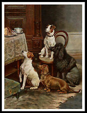FOX TERRIER POODLE AND DACHSHUND WATCHING CAKE VINTAGE STYLE DOG PRINT POSTER