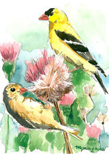 ACEO Limited Edition- Goldfich pair in thistles, Bird art print
