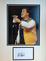 HARRY ENFIELD - TOP COMEDIAN & ACTOR - SUPERB SIGNED COLOUR DISPLAY