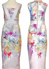 Ted Baker London Baby Pink Arienne Hanging Gardens Border Dress 3 (US 8) $295