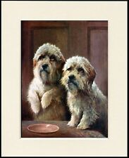 DANDIE DINMONT TERRIER DOGS CHARMING DOG PRINT MOUNTED READY TO FRAME