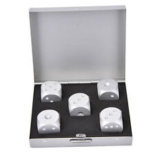 Silver Square Aluminium Alloy Poker Solid Dominoes Dice Game Portable Dice BBUS