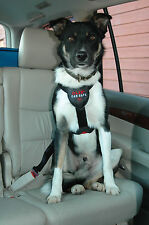 Clix Car Safe Dog Harness M Provides Safety and Comfort For Dogs in The Car M