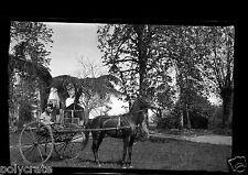 Portrait homme carriole attelage avec cheval - ancien négatif photo  an. 1930